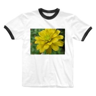 黄色いあいつ Ringer T-shirts