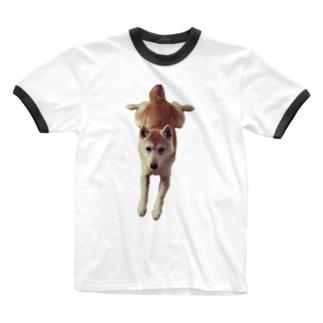 股関節がやわらかいアカ柴さん Ringer T-shirts