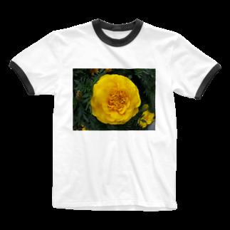 Dreamscapeの光よ!! 何処へ行くのか? Ringer T-shirts