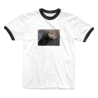 ncncccncの上目こた Ringer T-shirts