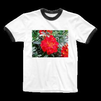 Dreamscapeの情熱はすぐそこに!! Ringer T-shirts