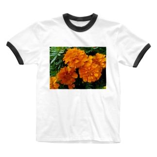 明るく爽やかに!! Ringer T-shirts