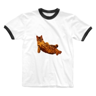 Elegant Cat Ringer T-shirts