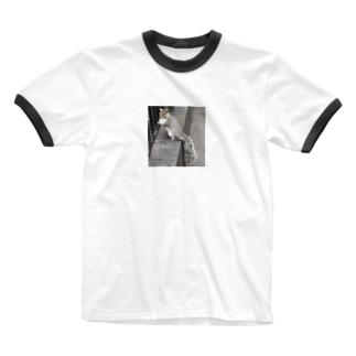 リスさん Ringer T-shirts