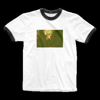 wa_d3300_の薔薇 Ringer T-shirts