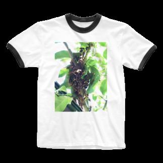 Pakiraの庭の住人 Ringer T-shirts