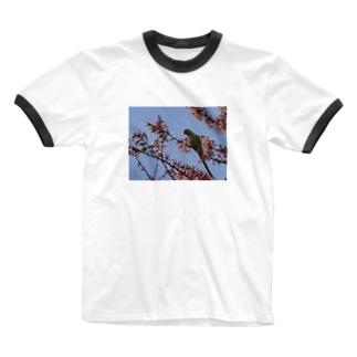 春、桜とワカケホンセイ Ringer T-shirts