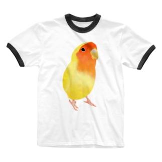 まめるりはことりのコザクラインコ おすましルチノー【まめるりはことり】 Ringer T-shirts