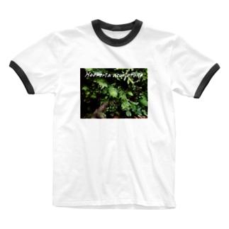アブラゴケ フォトT Ringer T-shirts