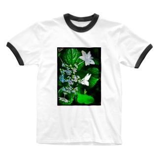 YAYOI.channel の白いガクアジサイ 青み Ringer T-shirts