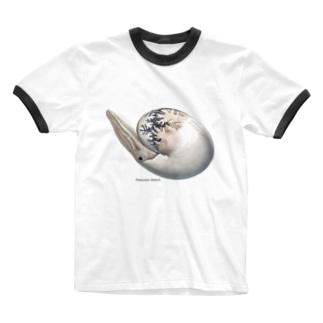Damesites damesi(アンモナイト) Ringer T-shirts