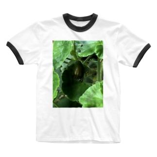 ばにーすぺーのコガネムシーはー金持ちだー Ringer T-shirts