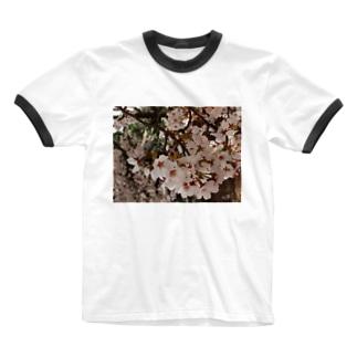 桜 サクラ cherry blossom DATA_P_152 春 spring Ringer T-shirts
