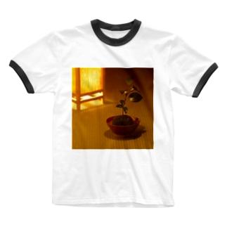 苔玉 Ringer T-shirts