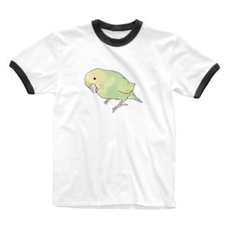 首傾げ スパングルセキセイインコちゃん【まめるりはことり】 Ringer T-shirts