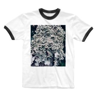 地衣 Ringer T-shirts