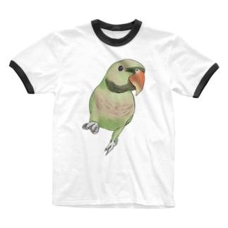まめるりはことりのご機嫌なダルマインコちゃん【まめるりはことり】 Ringer T-shirts