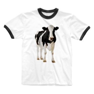 STYC MILK COW Ringer T-shirts