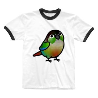 Chubby Bird ウロコインコ Ringer T-shirts