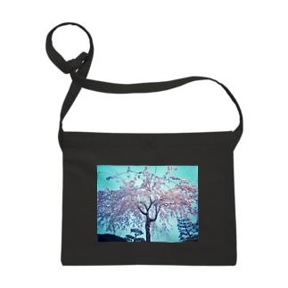 枝垂れ桜 Sacoches