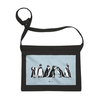 フンボルトペンギン Sacoches