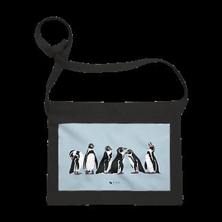 飛べない鳥のフンボルトペンギン Sacoches