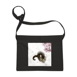 桜と猫 Sacoches