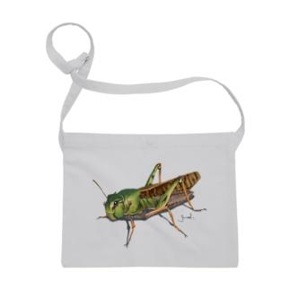 Grasshopper Sacoches