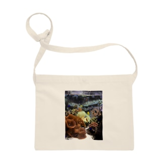 サンゴ  水族館 Sacoches