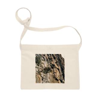 岩岩岩 Sacoches