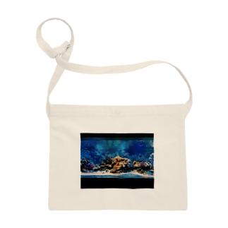 aquarium Sacoches