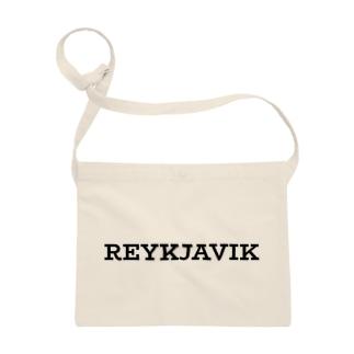 アイスランドの首都レイキャヴィーク Sacoches
