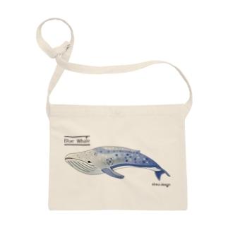 夢見るシロナガスクジラ Sacoches