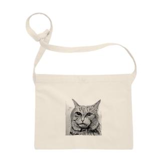 鉛筆画の猫ちゃん Sacoches