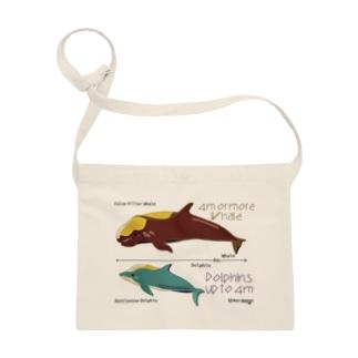 イルカとクジラの大きさ Sacoches