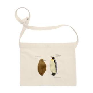 キングペンギンの親子 Sacoches