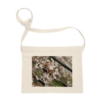 春の桜 Sacoches