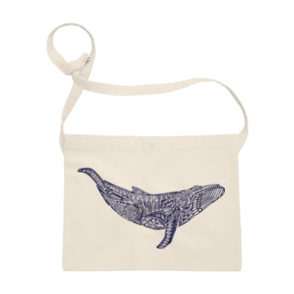 座頭鯨 Sacoches