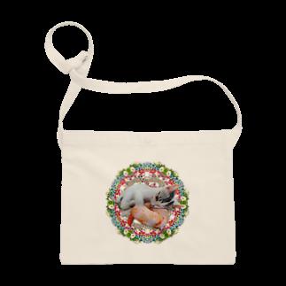 保護猫カフェ「駒猫」さん家のNo.4 イチゴちゃん♪ Sacoches