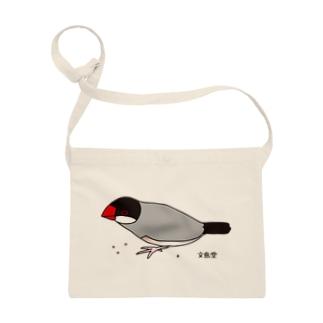 雑穀を食べる文鳥 Sacoches
