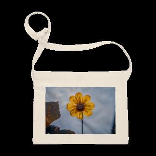 サンショク.の黄色い花 Sacoches