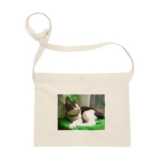 ハチワレ猫 ムン Sacoches