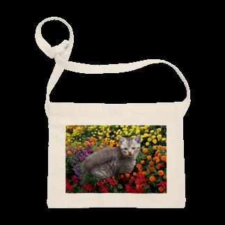 ちばっちょ【ち畳工房&猫ねこパラダイス】の花と子猫2 Sacoches