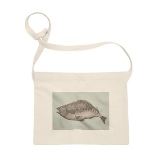魚A(カラー) Sacoches