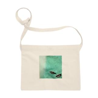 水鳥の夢うつつ⑵ Sacoches