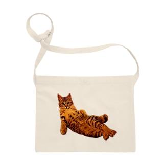 Elegant Cat Sacoches