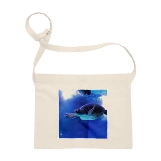 海亀 Sacoches
