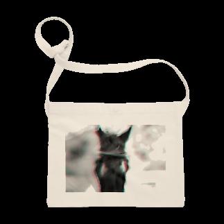 永久凍土の国の白夜の黒馬の物語、1 Sacoches