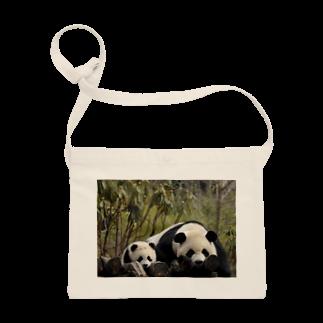 HKG パンダのパンダ親子 Sacoches