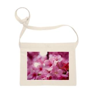 永遠の桜 -思いを託して- Sacoches